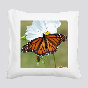 Monarch Butterfly on Cosmos Square Canvas Pillow