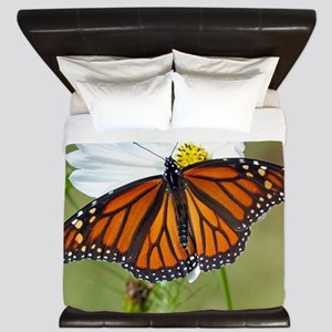 Monarch Butterfly on Cosmos King Duvet