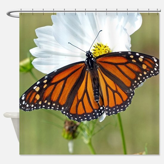 Monarch Butterfly on Cosmos Shower Curtain