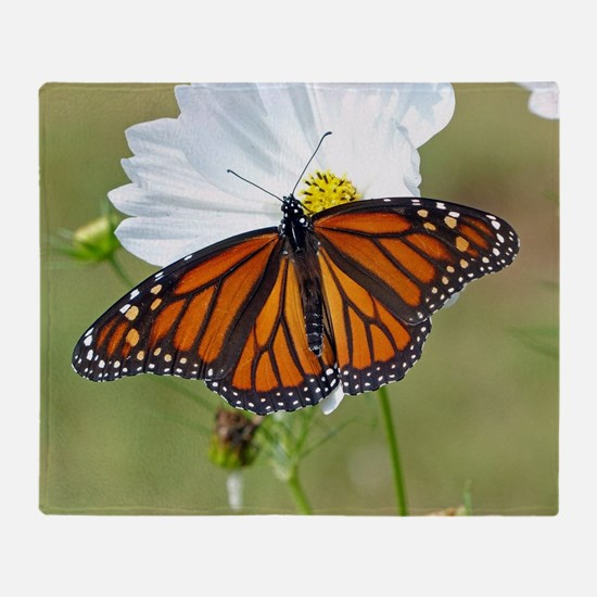 Monarch Butterfly on Cosmos Throw Blanket
