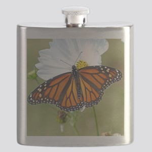 Monarch Butterfly on Cosmos Flask