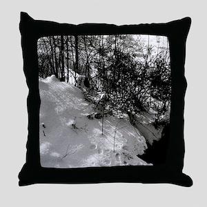 Harvest Moons Winter Throw Pillow
