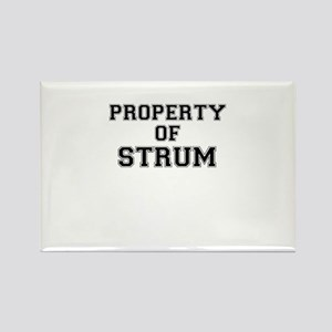 Property of STRUM Magnets