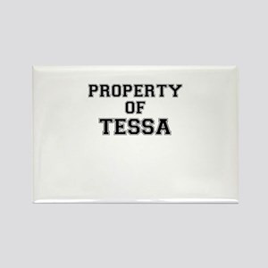 Property of TESSA Magnets