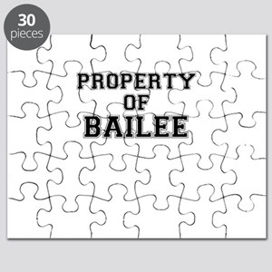 Property of BAILEE Puzzle