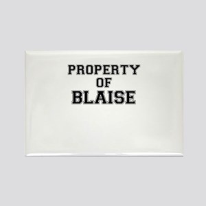 Property of BLAISE Magnets