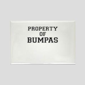 Property of BUMPAS Magnets
