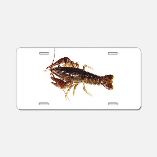 Crayfish 1 Aluminum License Plate