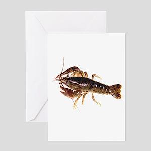 Crayfish 1 Greeting Cards