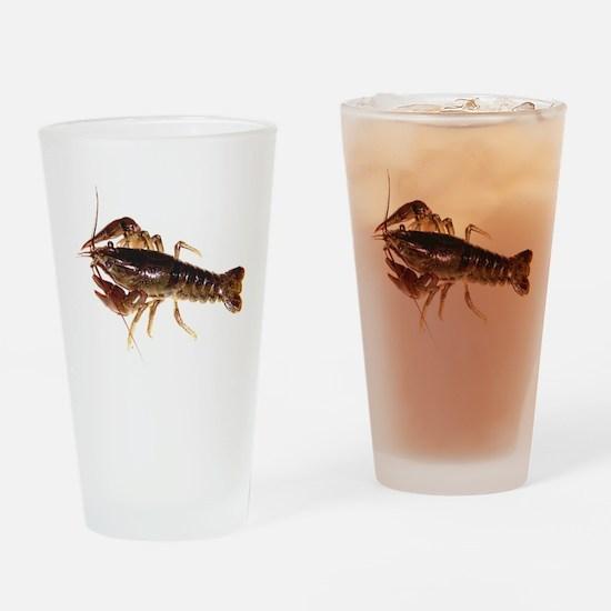 Crayfish 1 Drinking Glass