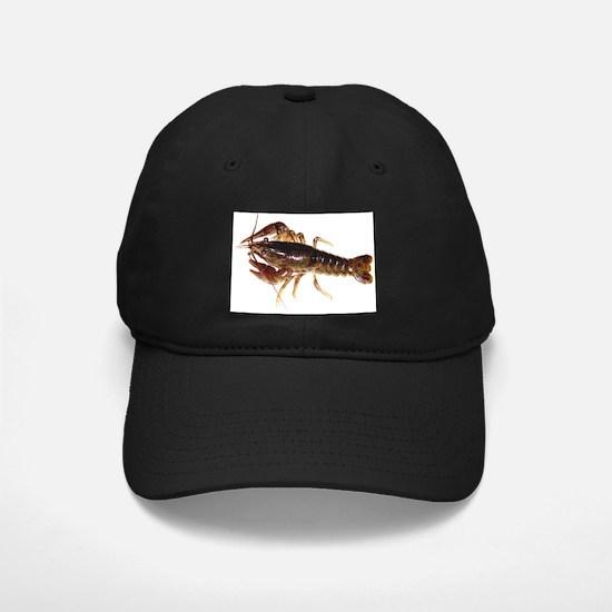 Crayfish 1 Baseball Hat