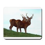 2 Bucks Mousepad