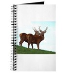 2 Bucks Journal