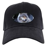 Gray Wolf Black Cap