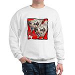 I'm a Gemini Sweatshirt