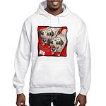 I'm a Gemini Hooded Sweatshirt
