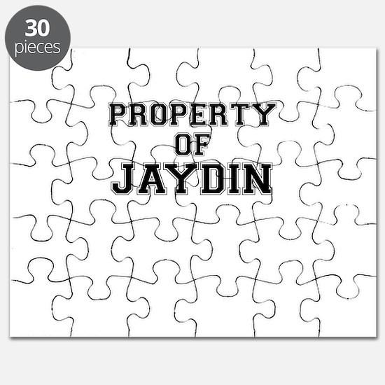 Property of JAYDIN Puzzle