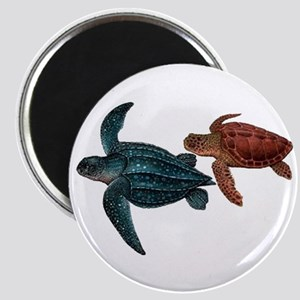VOYAGERS Magnets