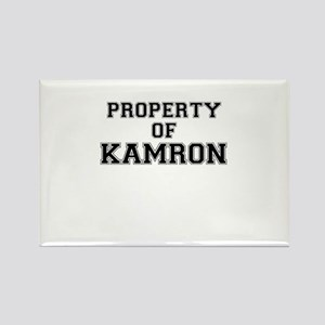 Property of KAMRON Magnets