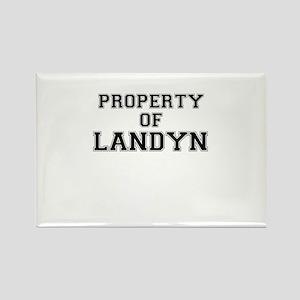 Property of LANDYN Magnets