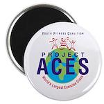 Project ACES Magnet