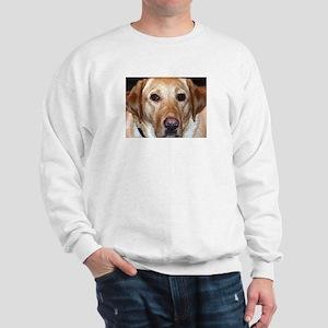 The Gaze Sweatshirt