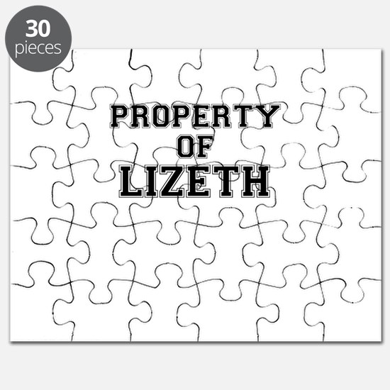Property of LIZETH Puzzle