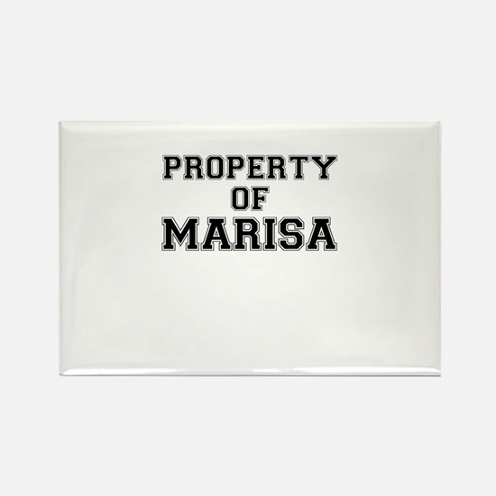 Property of MARISA Magnets