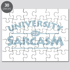 Sarcasm Puzzle
