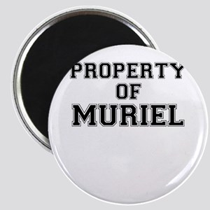 Property of MURIEL Magnets