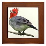 Cardinal Framed Tile