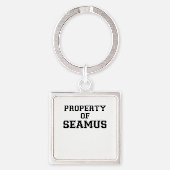 Property of SEAMUS Keychains