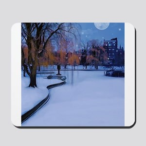 Boston Commons Frozen Pond at Night Mousepad