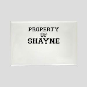 Property of SHAYNE Magnets