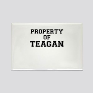 Property of TEAGAN Magnets