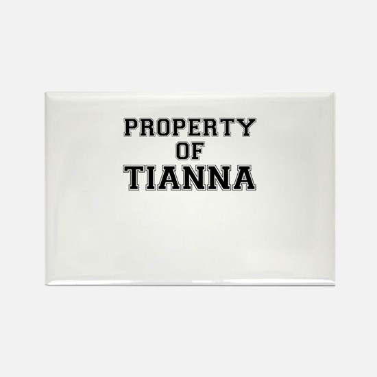 Property of TIANNA Magnets