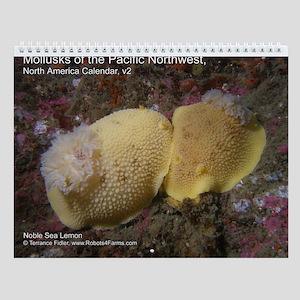 Mollusks of the North Pacific 2013 Calendar v2