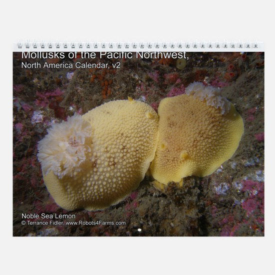 Mollusks of the North Pacific 2013 Calendar v2