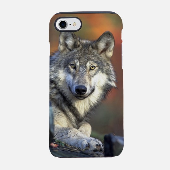 Wolf 024 iPhone 8/7 Tough Case