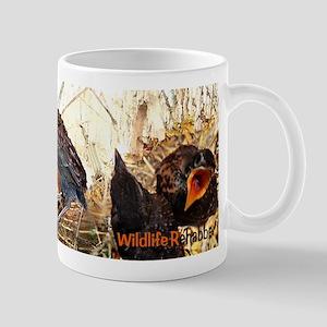 Songbird Rehab Mug