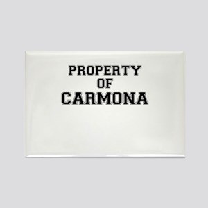 Property of CARMONA Magnets