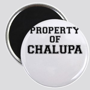 Property of CHALUPA Magnets
