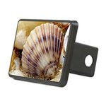 Seashells Rectangular Hitch Cover