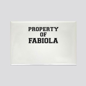 Property of FABIOLA Magnets