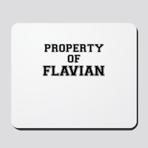 Property of FLAVIAN Mousepad