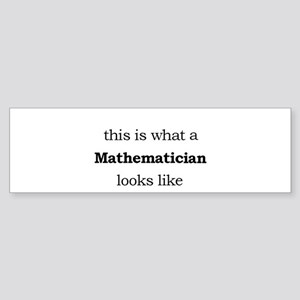 What a Mathematician Looks LIke Sticker (Bumper)