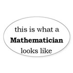 What a Mathematician Looks LIke Sticker (Oval)