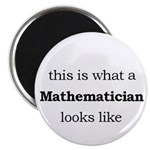 What a Mathematician Looks LIke Magnet