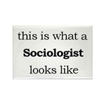 What a Sociologist Looks Like Rectangle Magnet