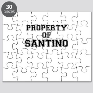 Property of SANTINO Puzzle